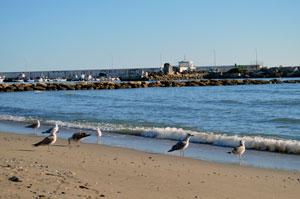 Зимний пляж