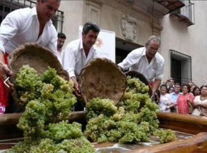 Праздник в честь сбора винограда
